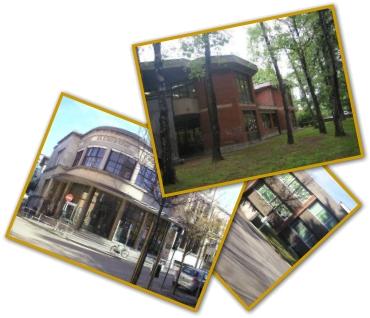 scuole collage foto