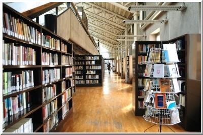Biblioteca corridoio immagine