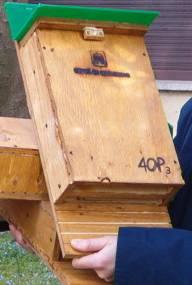 bat box 2
